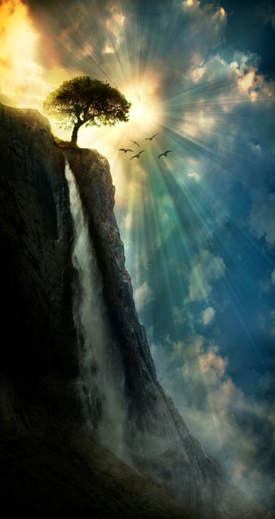 Waterfall, sun, birds, tree