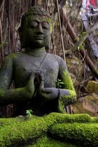 Buddha from Borneo