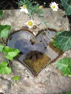 stone-heart-pond